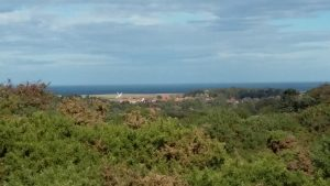 View out over North Norfolk marshes