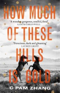 Cover image for How Much of These Hills is Gold by C Pam Zhang