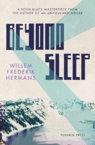 Cover image for Beyond Sleep by Willem Frederik Hermans