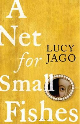 Cover image for A Net for Amall Fishes by Lucy Jago