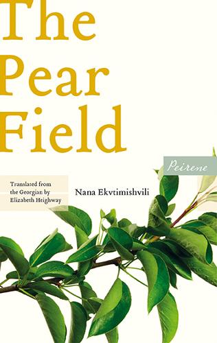 Cover image for The Pear Field by Nana Ekvtimishvili