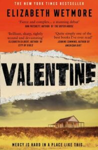 Cover image for Valentine by Elizabeth Wetmore